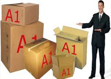 A1 Packers and Movers in Bhopal